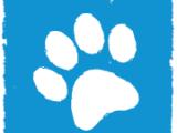 ANIMIBOX-comiesięczna paka dla zwierzaka