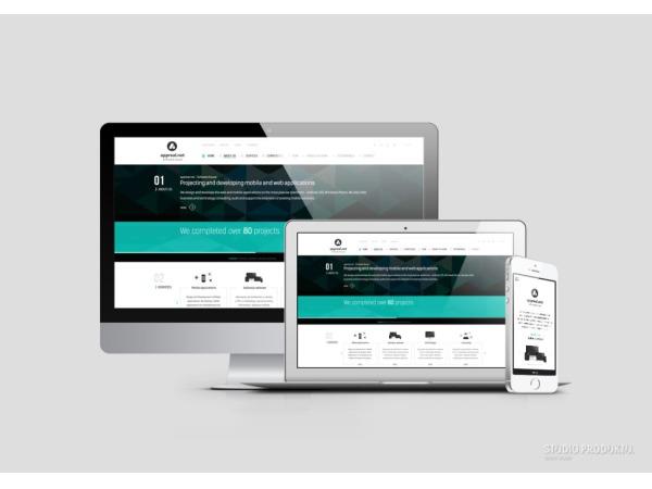 Projekt strony internetowej oraz materiałów reklamowych